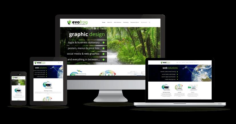 Evofrog Website Design